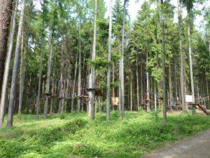 Lanový park Veverák