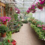 Zahradnictví u ZOO